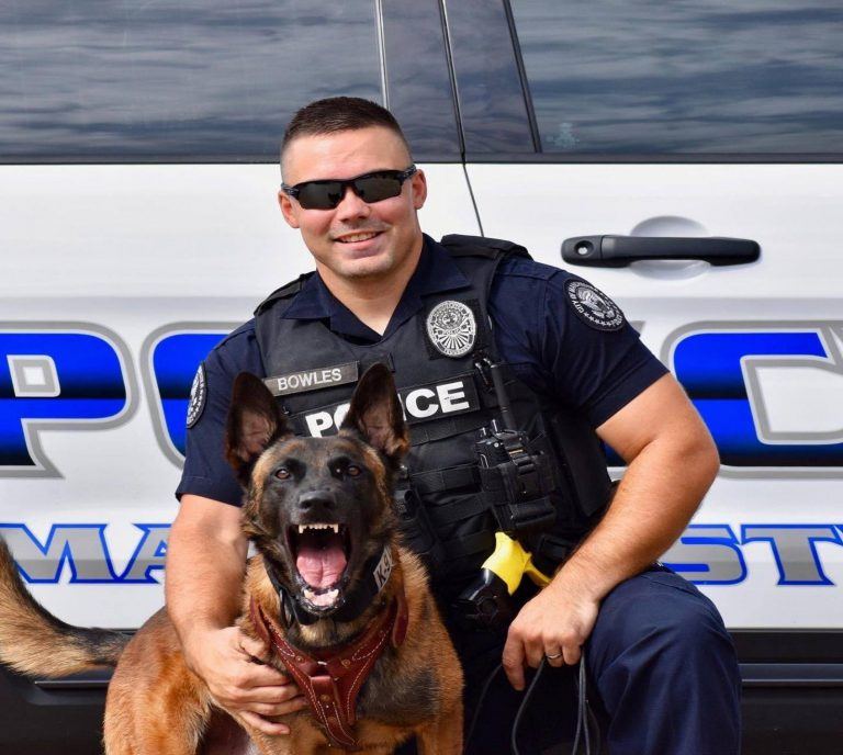 What Dogs Are Used As Police Dogs?